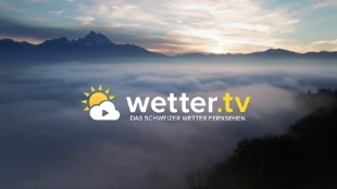 Wetter International