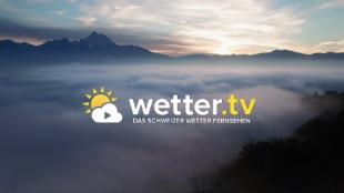 Tv Media Heute
